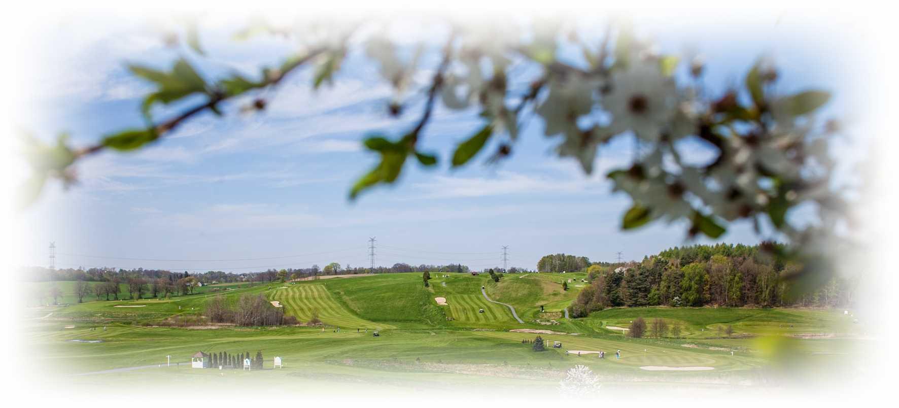 Liga Cezar Golf